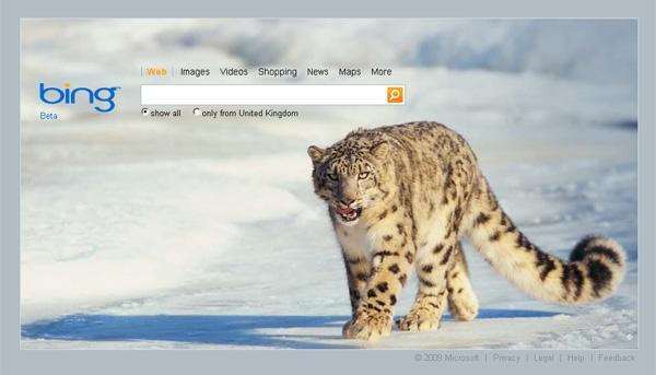 نحوه ذخیره تصویر روز موتور جستجوی Bing