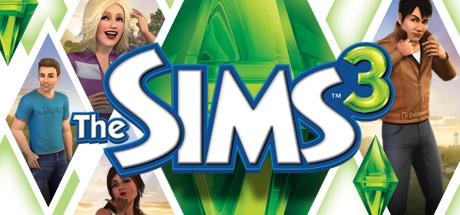 تمیز کردن یکجای خانه در The Sims 3